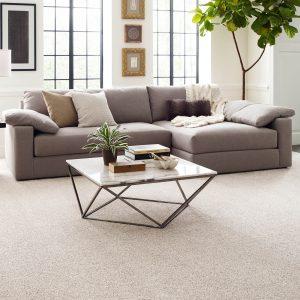 Modern living room | Broadway Carpets, Inc